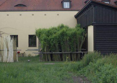 eingesetzte Weiden